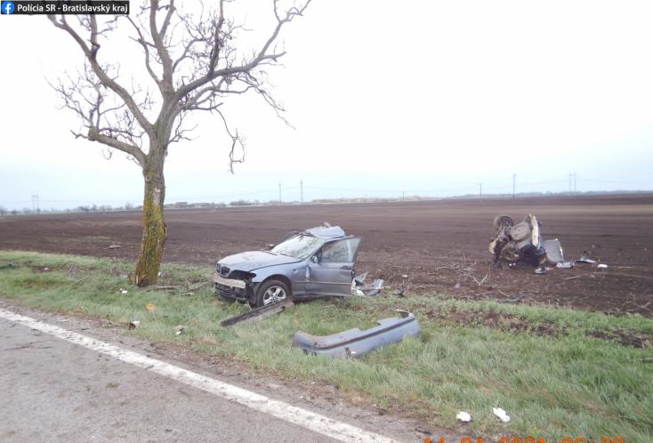 Durva baleset: Kettészakadt a fának rohanó BMW (FOTÓK)