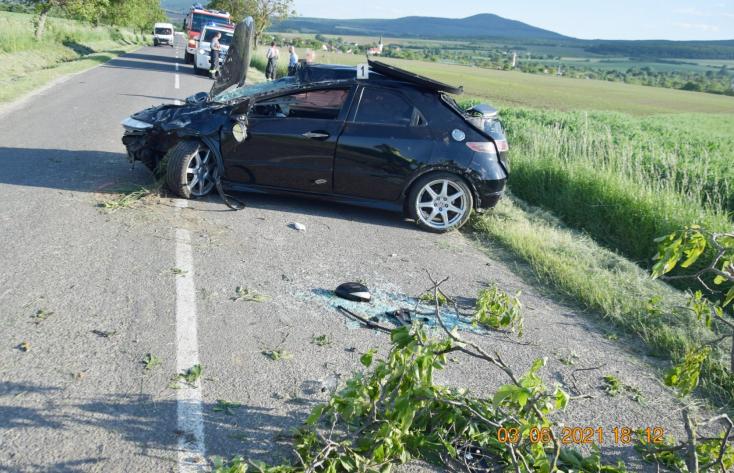 BALESET: Letarolta egy fa lombját a hullarészeg autós (FOTÓK)