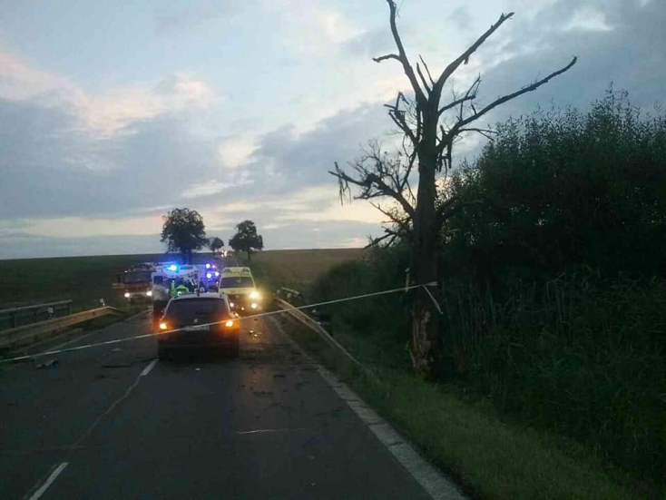 BORZALOM: Fának csapódott az autó, szörnyethalt két fiatal