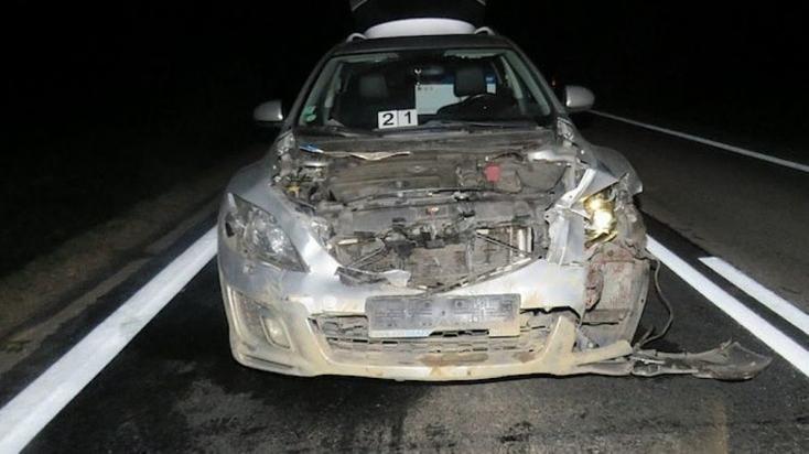 Nyugodtan haladt autójával a mit sem sejtő sofőr, mikor furcsa árnyak bukkantak fel az úton
