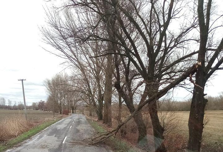 Felborult egy utánfutó Bősnél, útra dőlt faágak többfelé a Csallóközben!