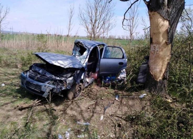 Nekivágódott a fának egy személyautó – egy fiatal férfi meghalt, a sofőr be volt drogozva