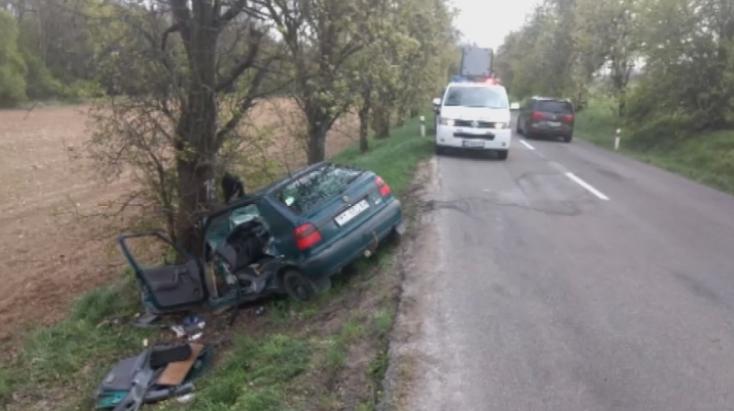 BALESET: Fának csapódott az 50 éves nő, helikopterrel szállították kórházba