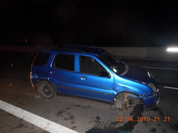 Kifutott az útra egy őz, a sofőr már nem tudta megakadályozni az ütközést