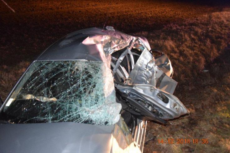 Brutálisan összetört a fának hajtó autó, 38 éves férfi halt meg (FOTÓK)