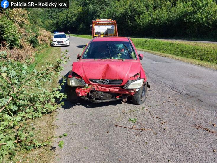 BALESET: A fa adta a másikat a holtrészeg sofőrnek