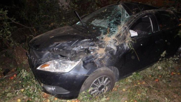 Lehajtott az útról és fának csapódott autójával a 40 éves részeg nő